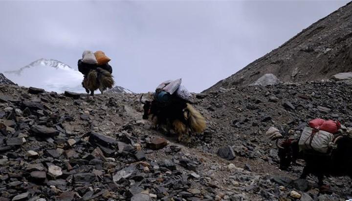 挺进海拔5800米的珠峰过渡营地