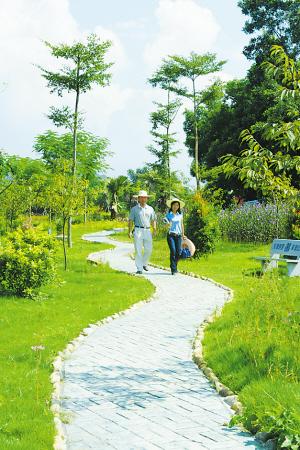 田园小岛公园景观设计
