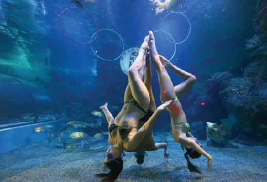 壁纸 海底 海底世界 海洋馆 水族馆 549_374