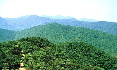 南京老山国家森林公园图片