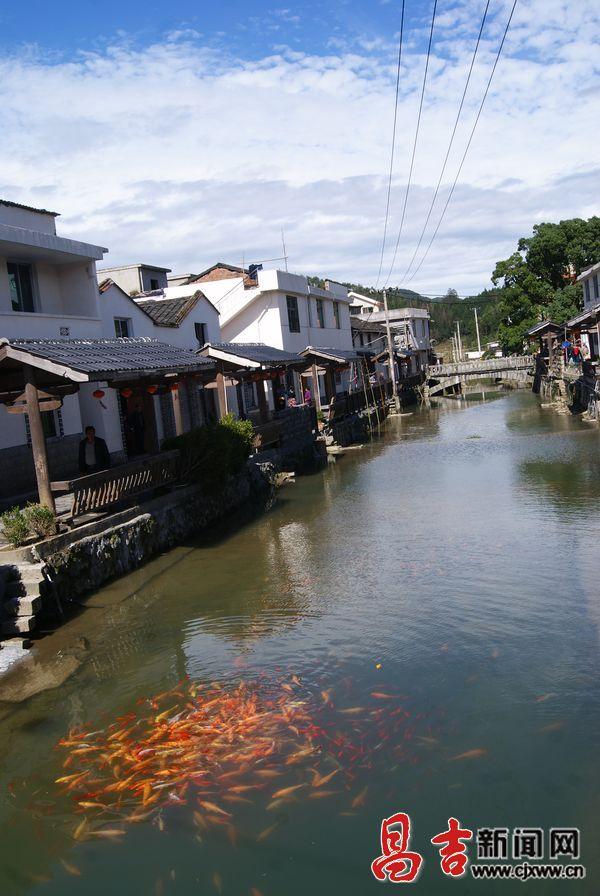 洋中镇天湖村:海拔千米的小桥流水人家